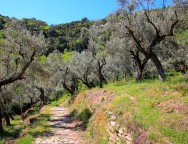 Randonnée en Grèce : le Pélion, entre mer et montagne