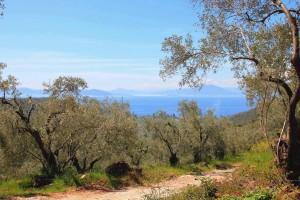 Randonnée en Grèce dans le Pélion