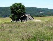 Compostelle J3 : Saugues – Domaine du Sauvage (19km)