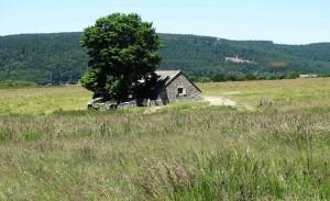 Saugues - Domaine du Sauvage