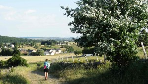 Chemin de Saint-Jacques de Compostelle