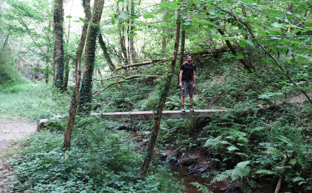 Pont en forêt sur le Chemin de Compostelle