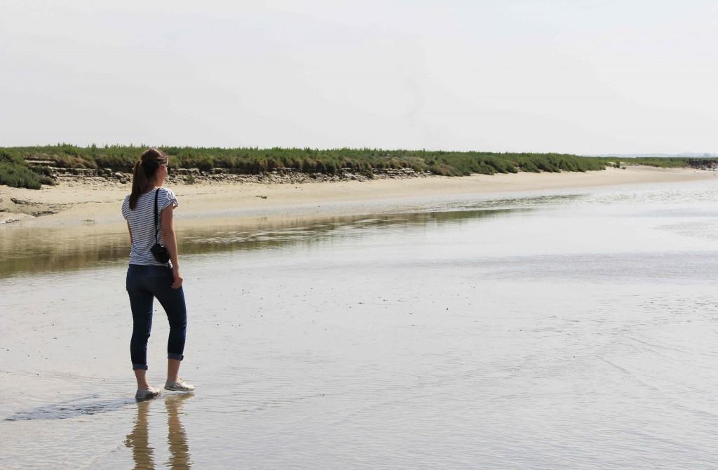 La Baie de Somme à pied