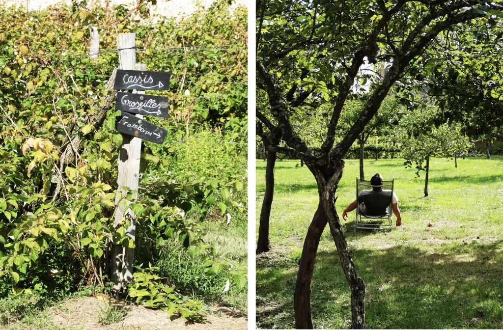 Cueillette dans le jardin potager du château de la Bussière