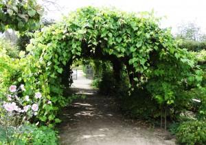 Parc du château de la Bussière