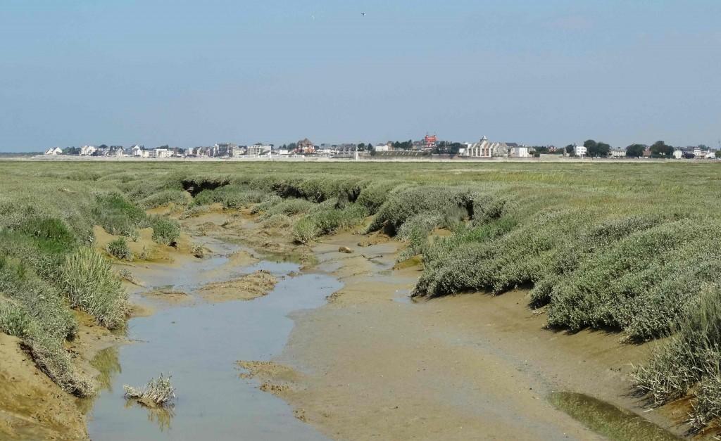 Traversée de la Baie de Somme à pied