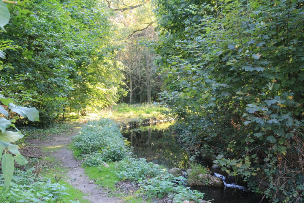 Fondation louis vuitton jardin d 39 acclimatation unkm pied - Jardin d acclimatation bois de boulogne ...
