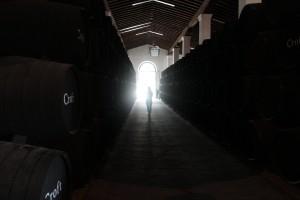 Bodega Gonzalez Byass à Jerez de la Frontera