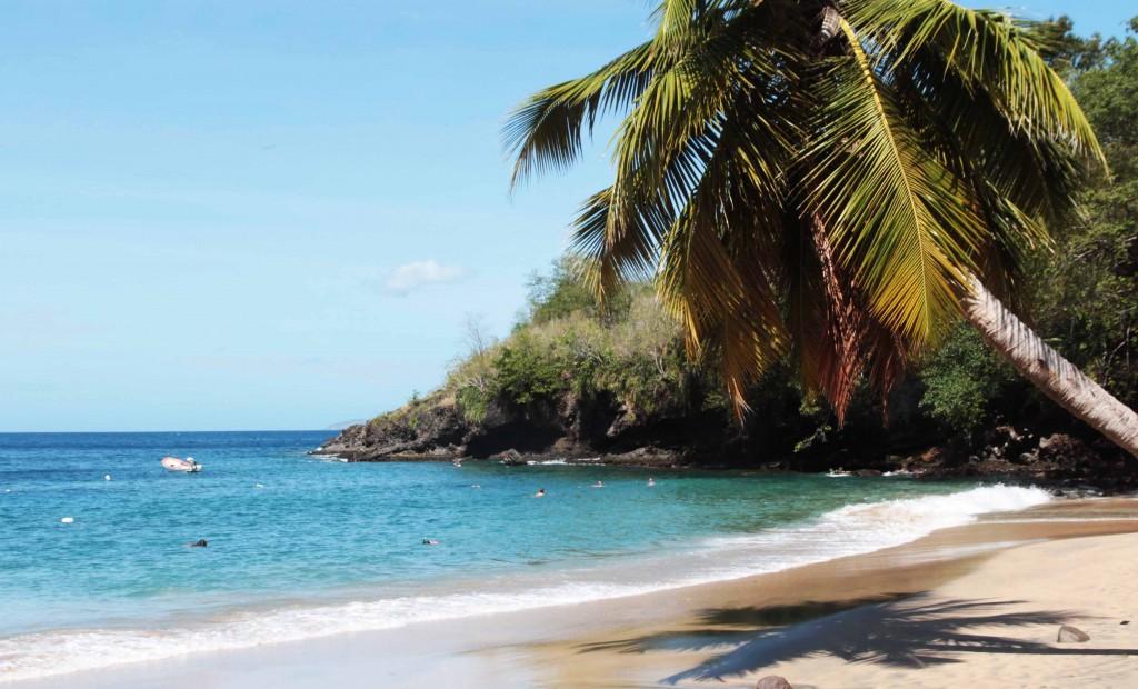 Anse Dufour en Martinique