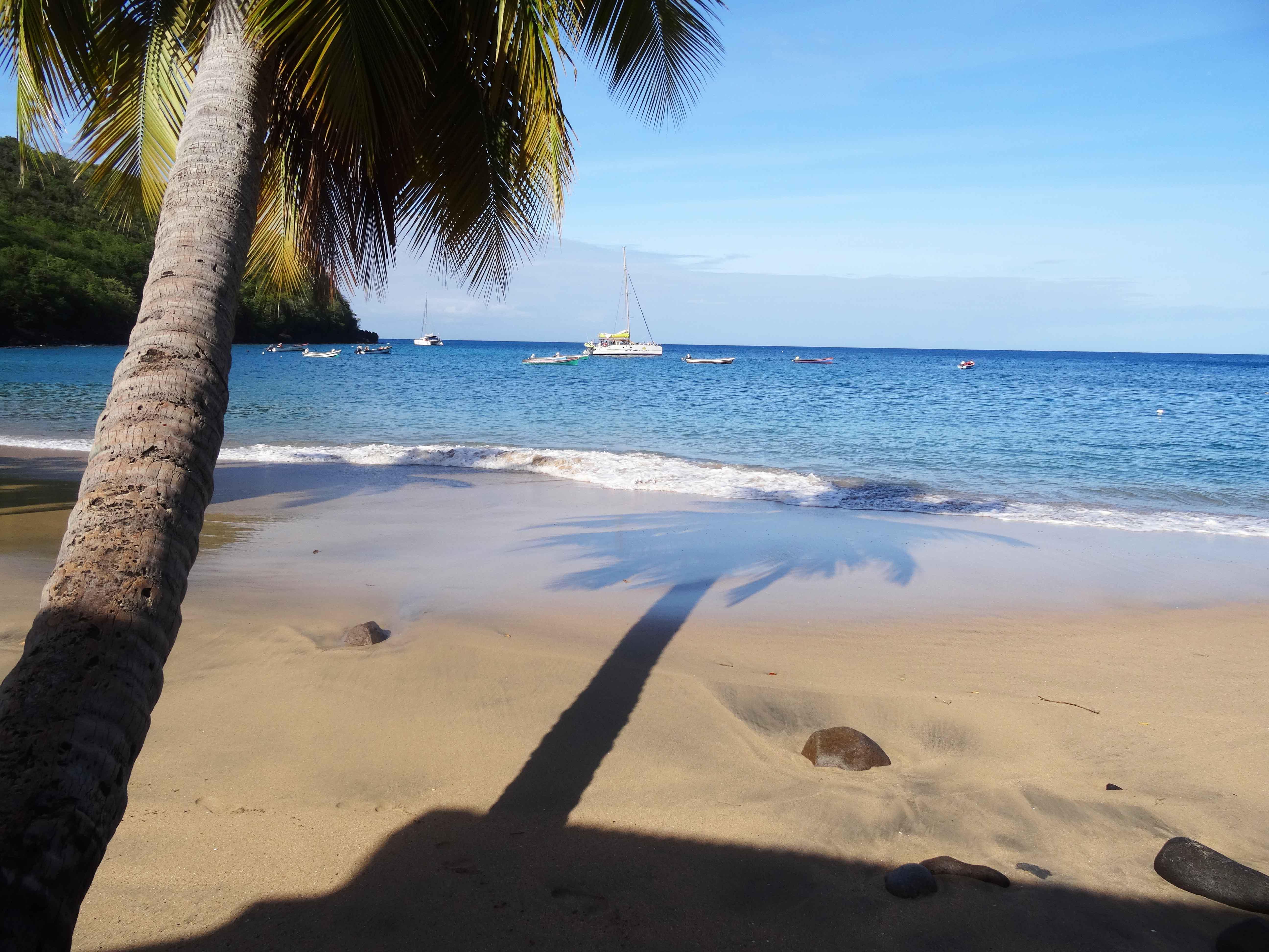 Les plus belles plages de martinique unkm pied for Les plus belles moquettes