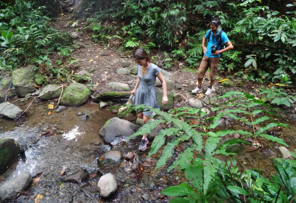 Randonnée à la Cascade Couleuvre