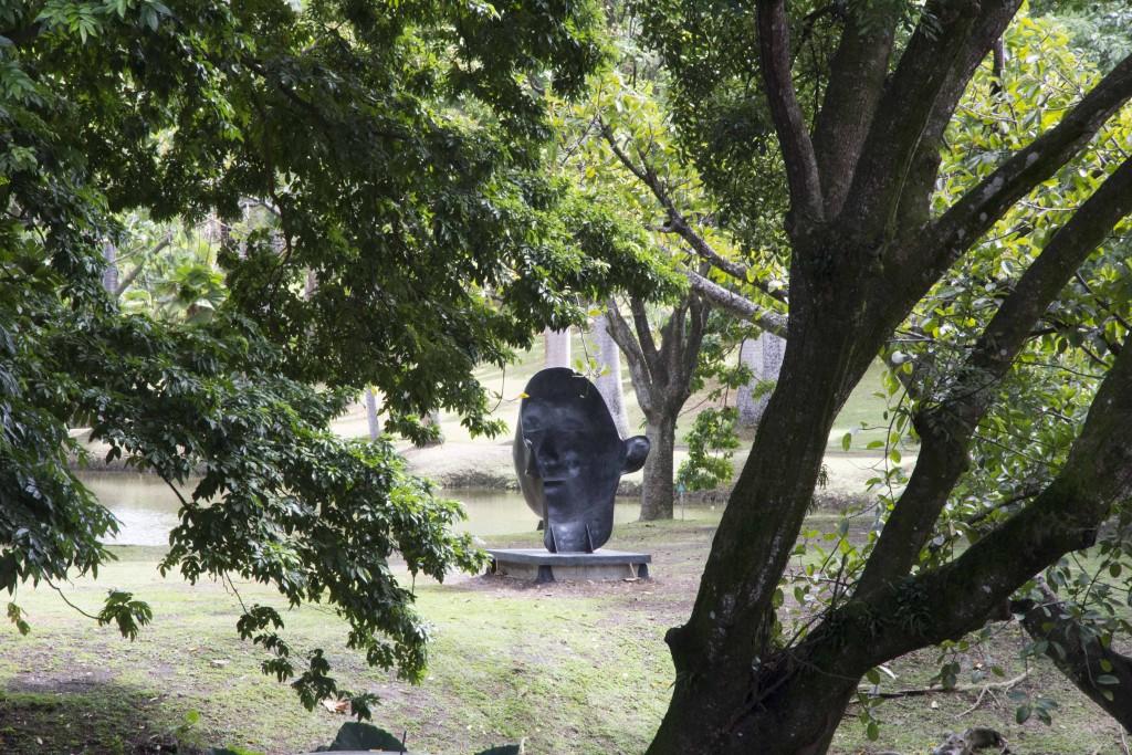 Habitation cl ment et d gustation de rhum unkm pied for Le jardin fromager