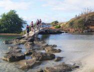 Un trail en Martinique… dans la Savane des Pétrifications!