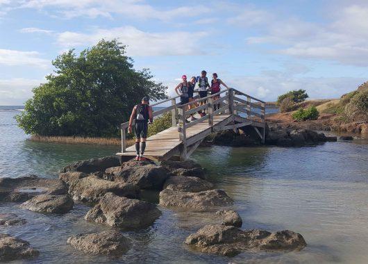 Un trail en Martinique