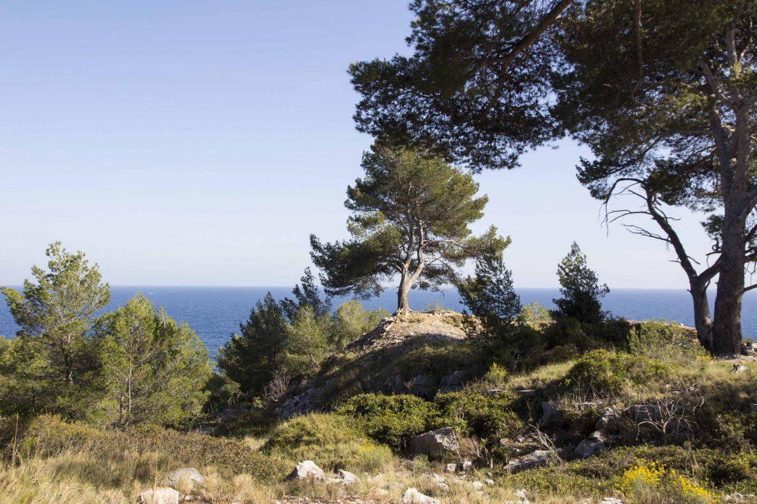 Randonnée Pointe de la Cacau